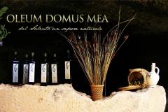 oleumdomusmea-slide221